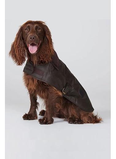 Barbour Yağlı Köpek Kıyafeti Ol71 Olive Yeşil